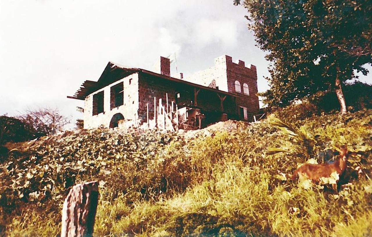 Rebuilding the Property