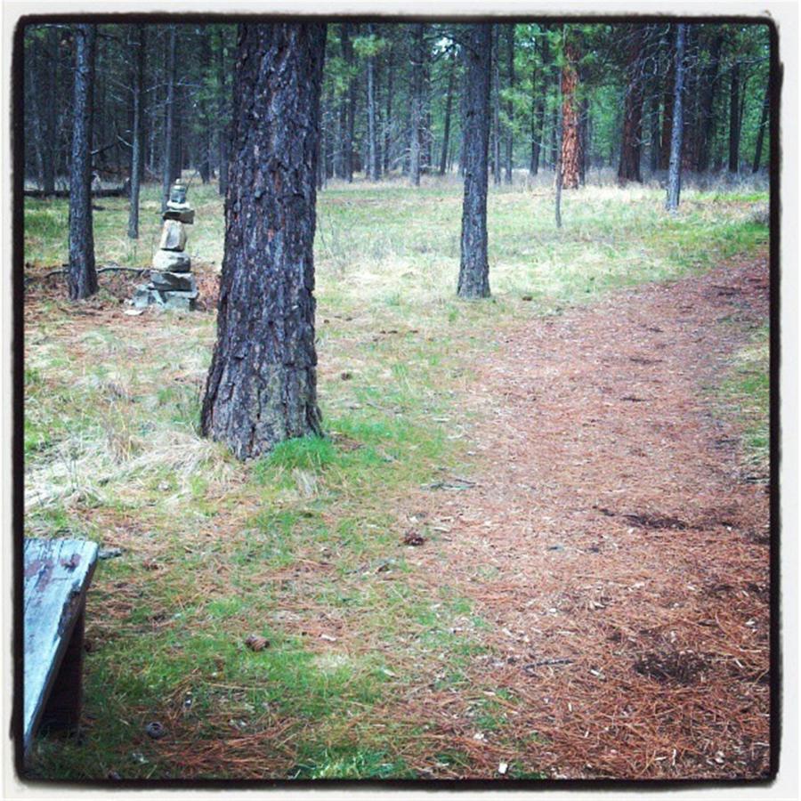 Mule Pasture trail.jpg