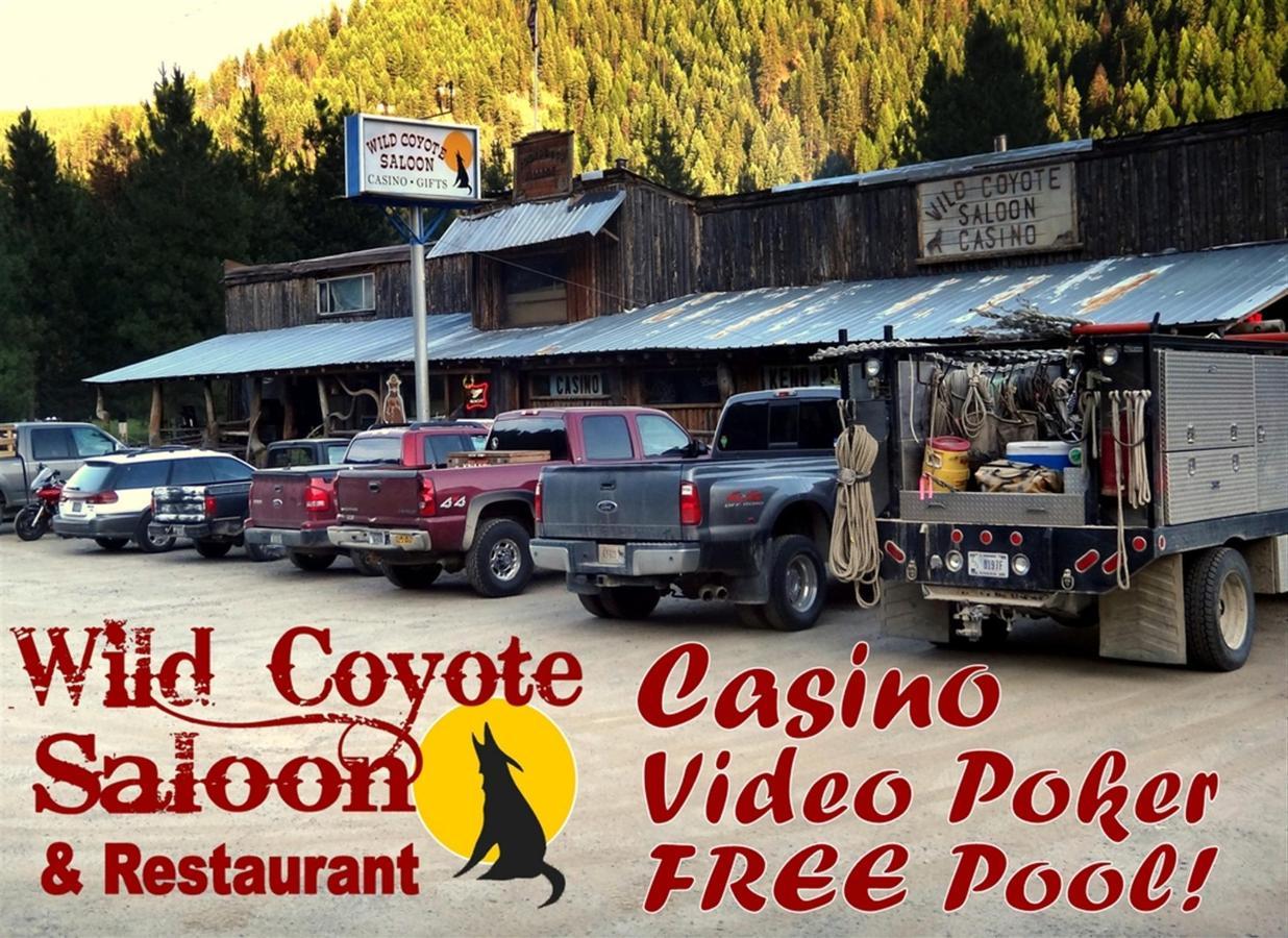 Wild Coyote Saloon.jpg