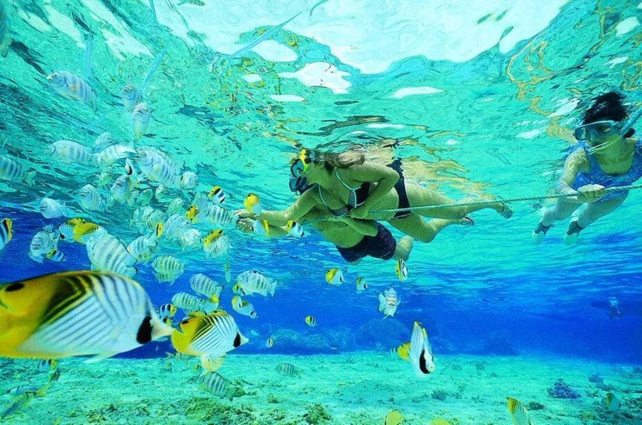 Snorkeling in Aruba.jpg