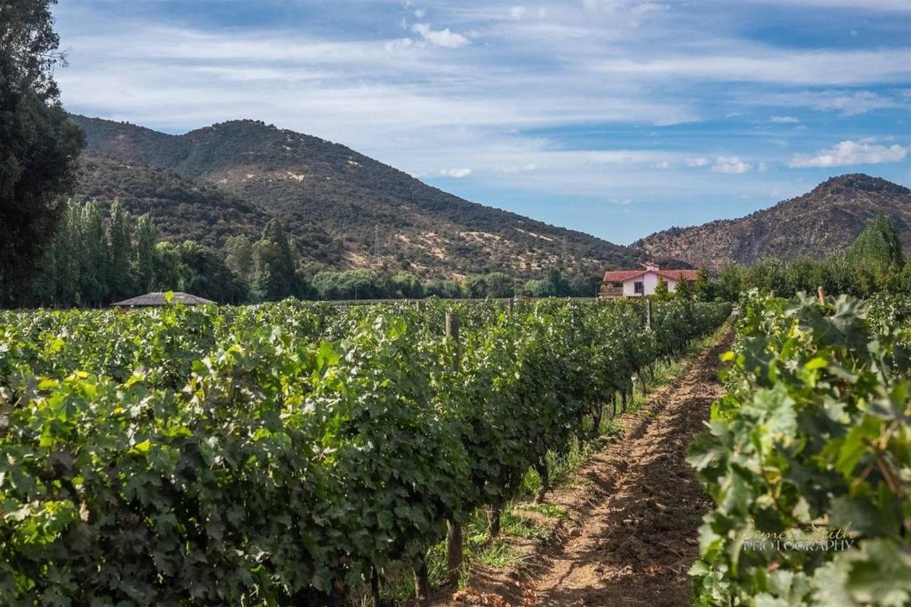 Casa Silva Winery.jpg