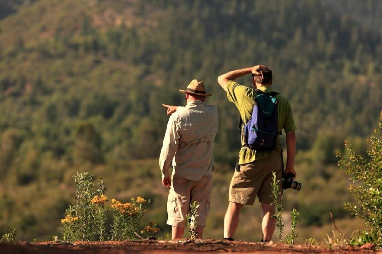 Spotting.jpg de la faune