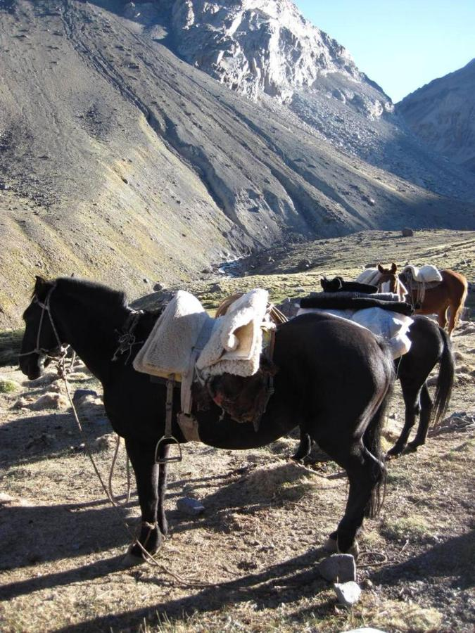 Multi-Day Adventures Andean Trek.jpg