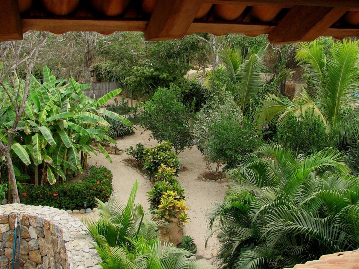 Jardín Jan 2007.jpg