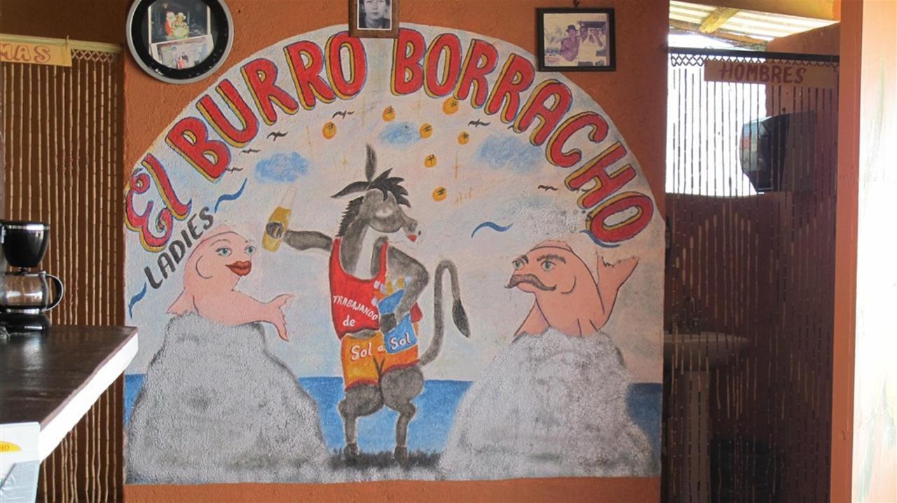 El burro Borracho.jpg