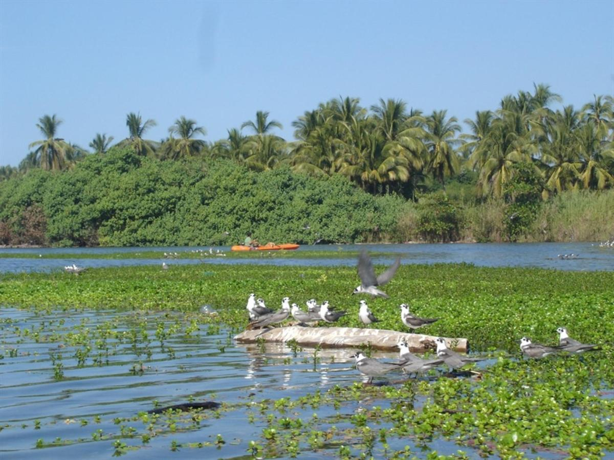 EcoTours y naturaleza
