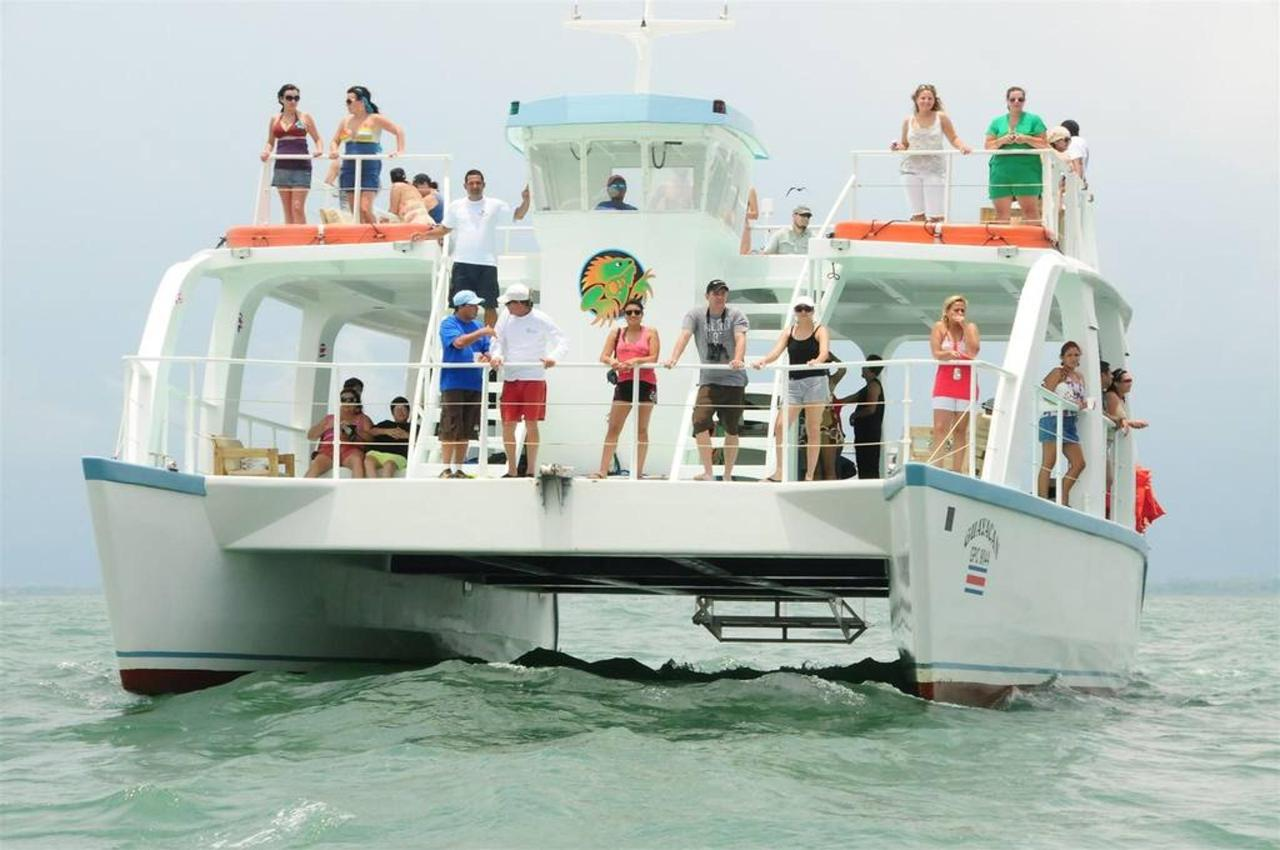 Activities & Excursions - Catamaran Tour.jpg
