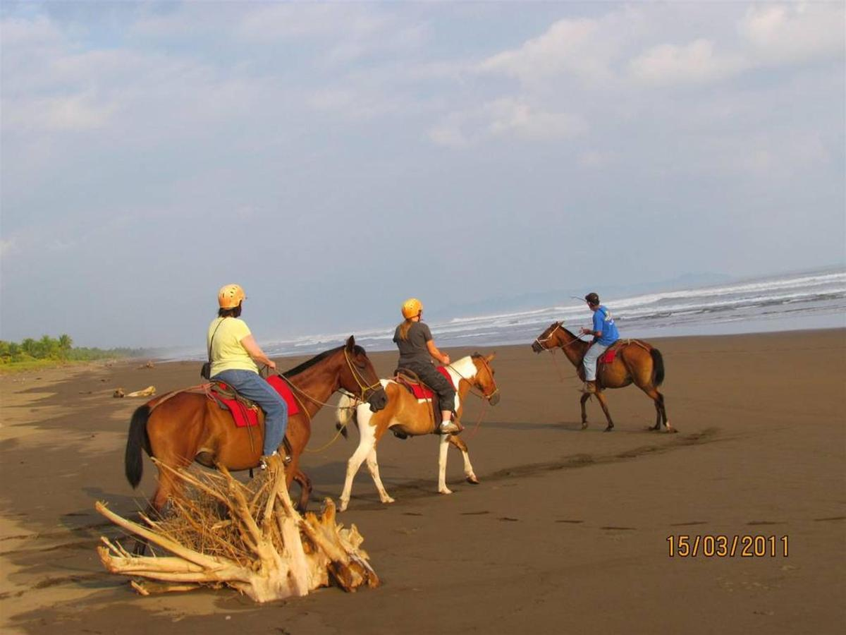 Activities & Excursions - Horse riding.jpg