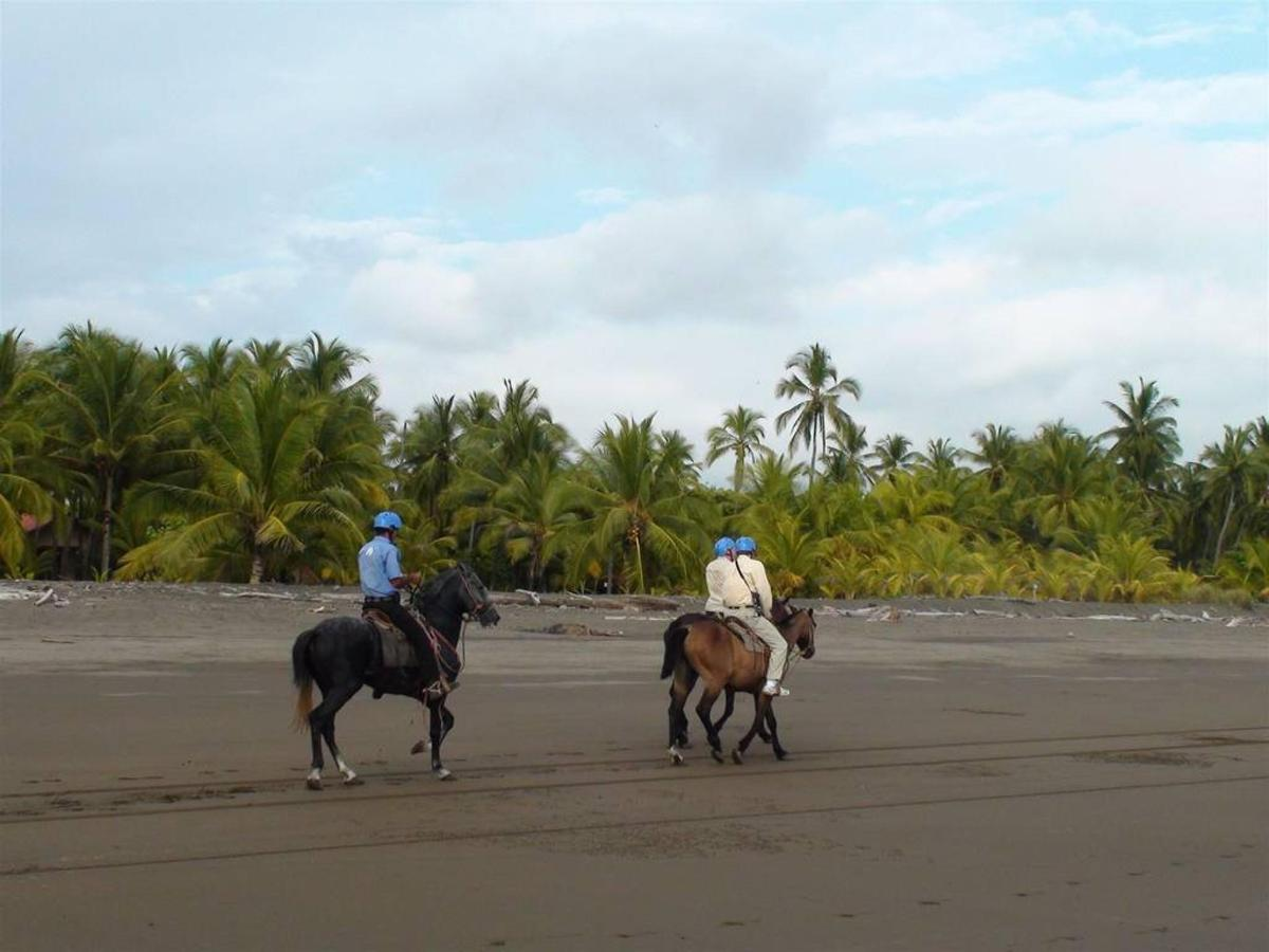 Activities & Excursions - Horse riding at the beach.jpg