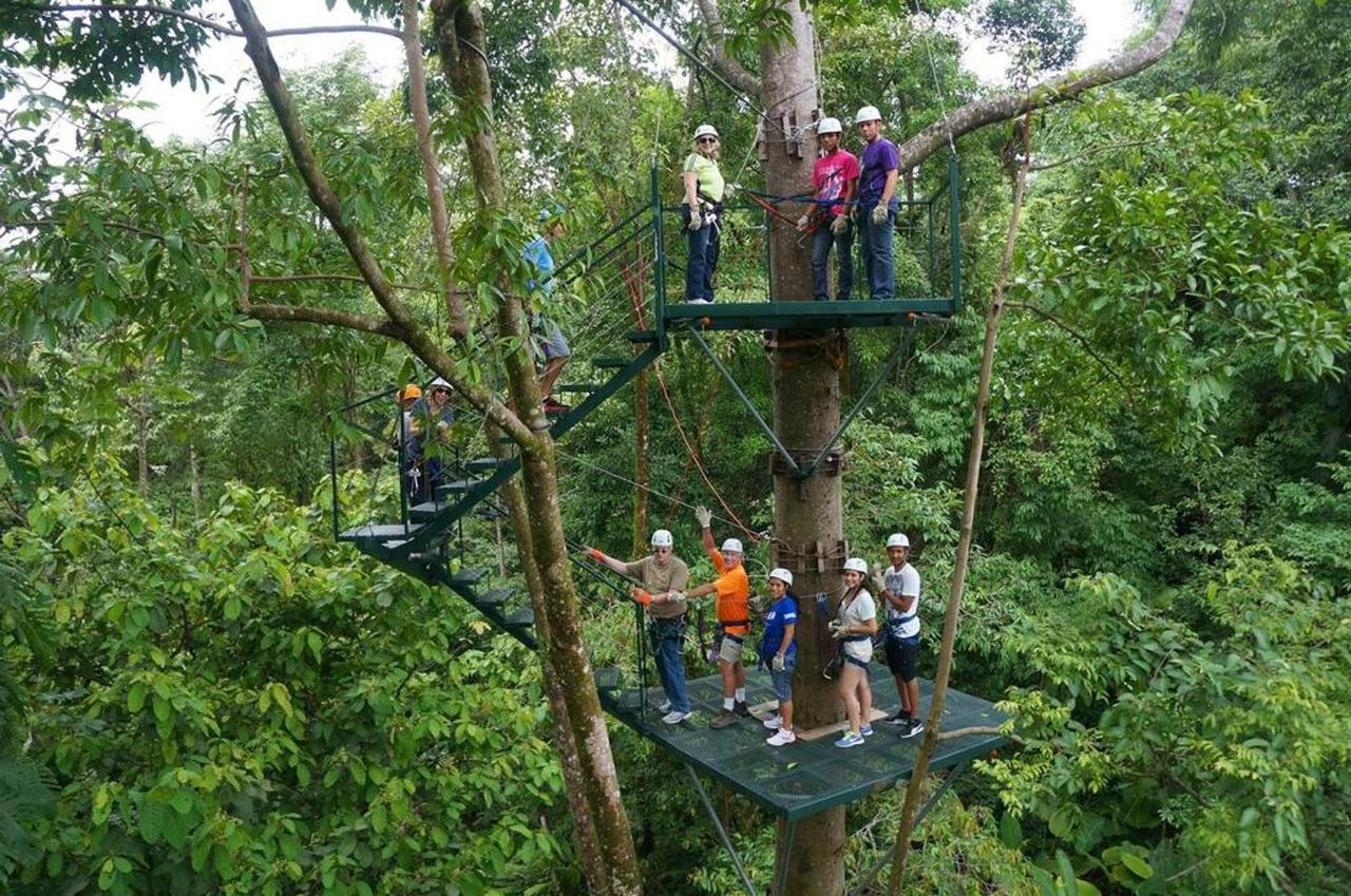 Activities & Excursions - Canopy LIne.jpg