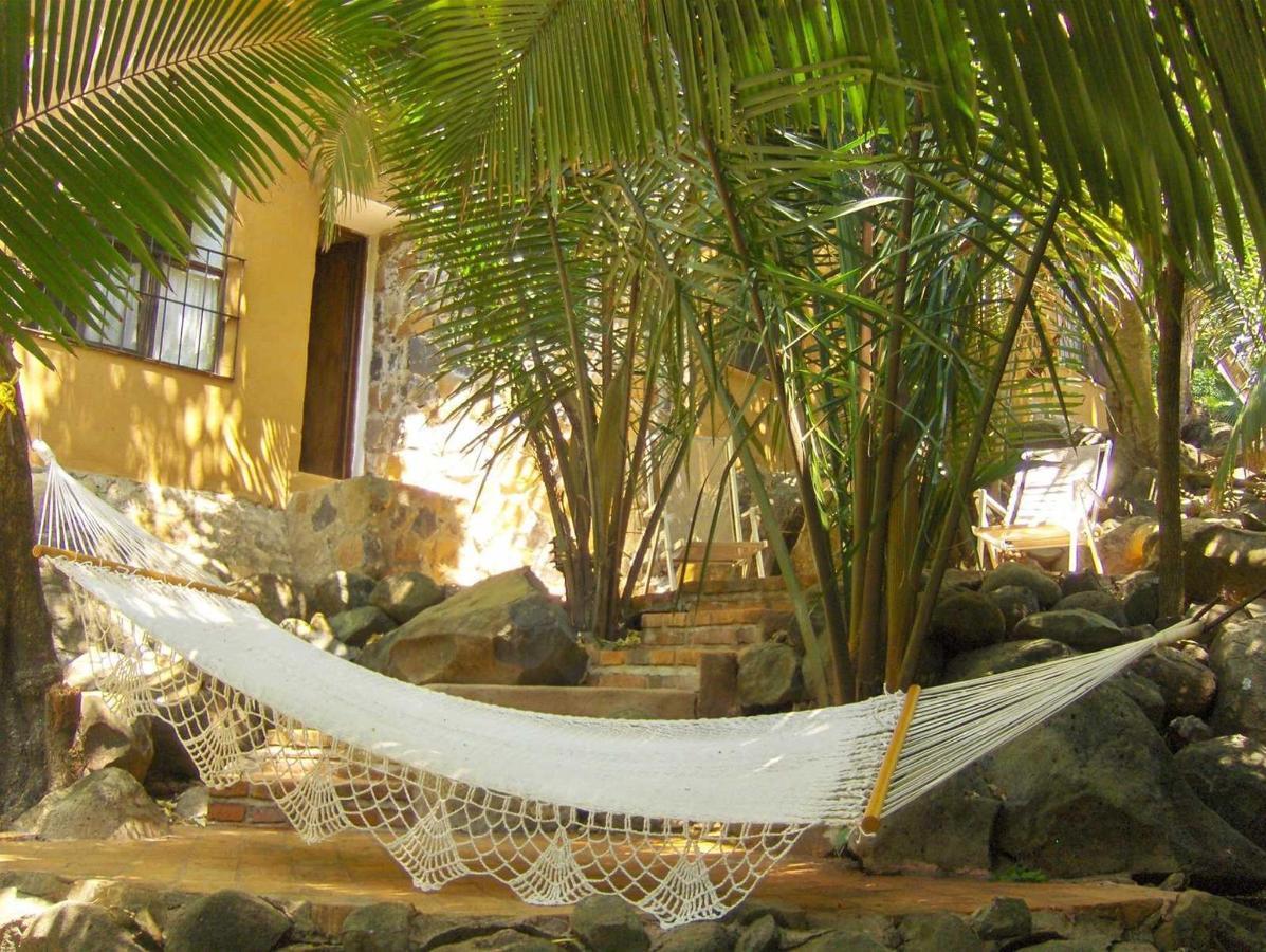 Azul Suites - Majahua hotel selva.jpg