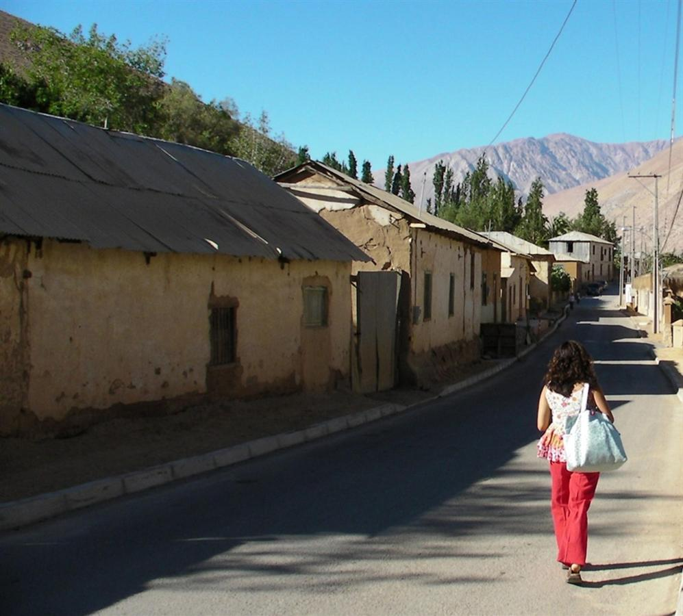 Town of Pisco del Elqui