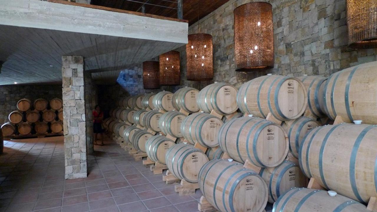 Distillery Pisco Mistral.jpg