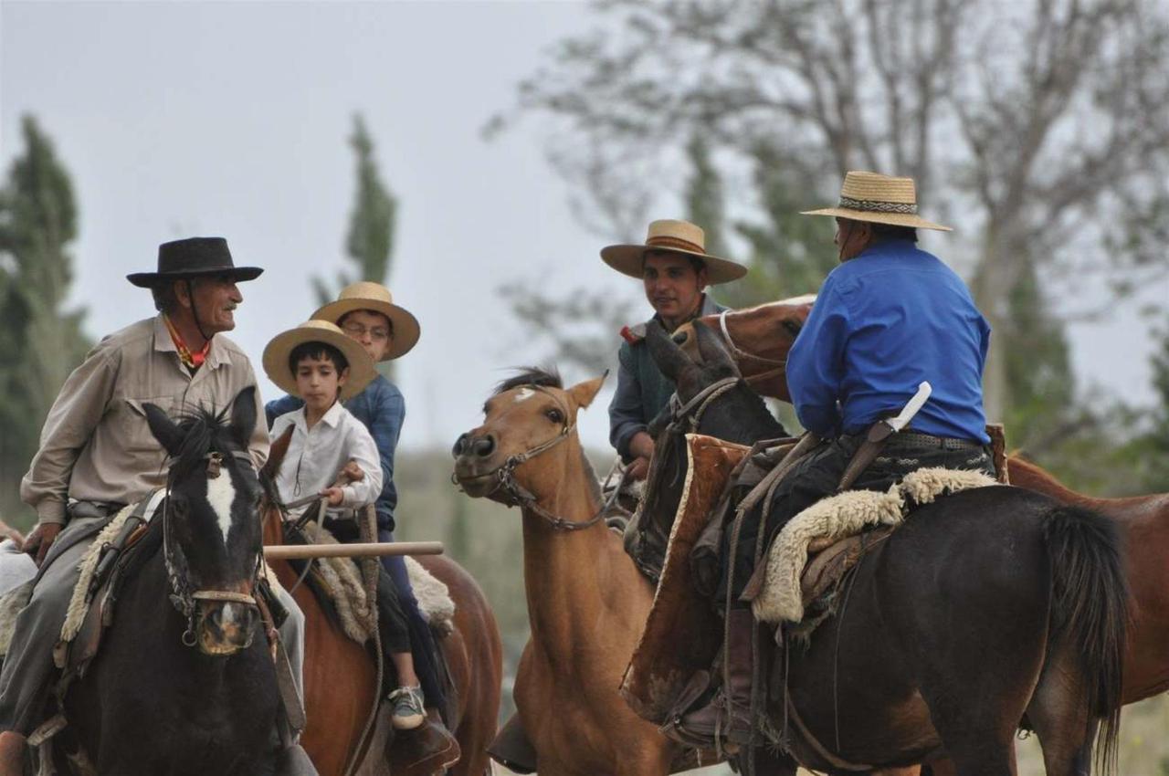 Mendoza Experience