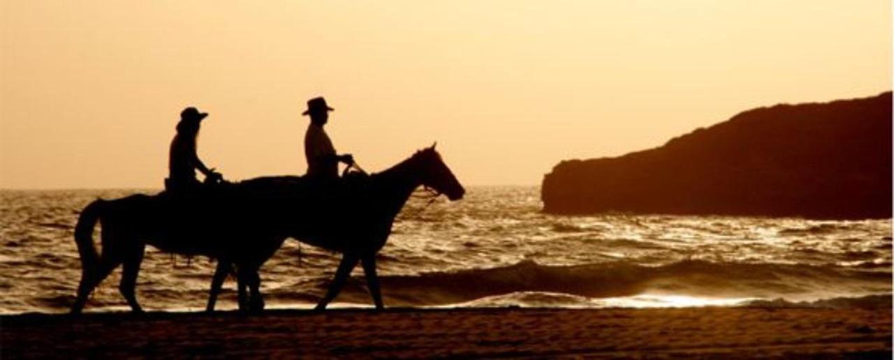 The Mendocino Coast