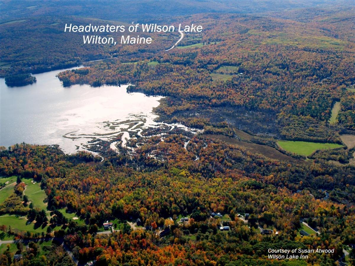 Wilson Lake