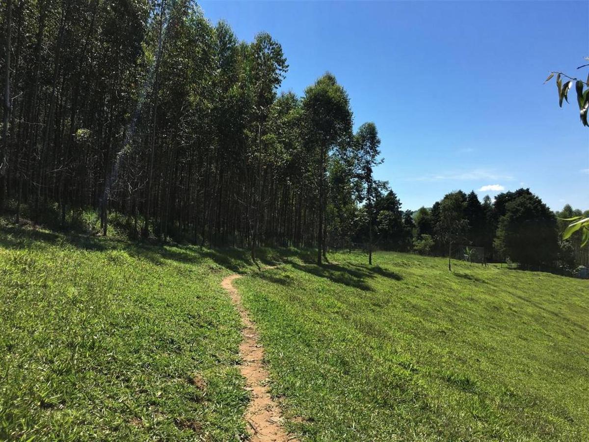 Trilha Ecologica