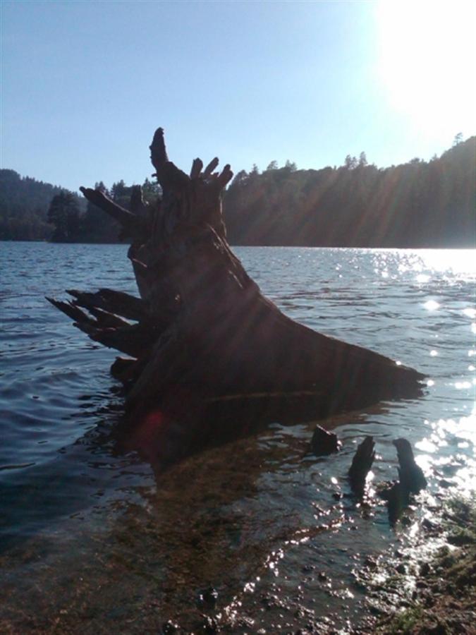 Lago Gregory