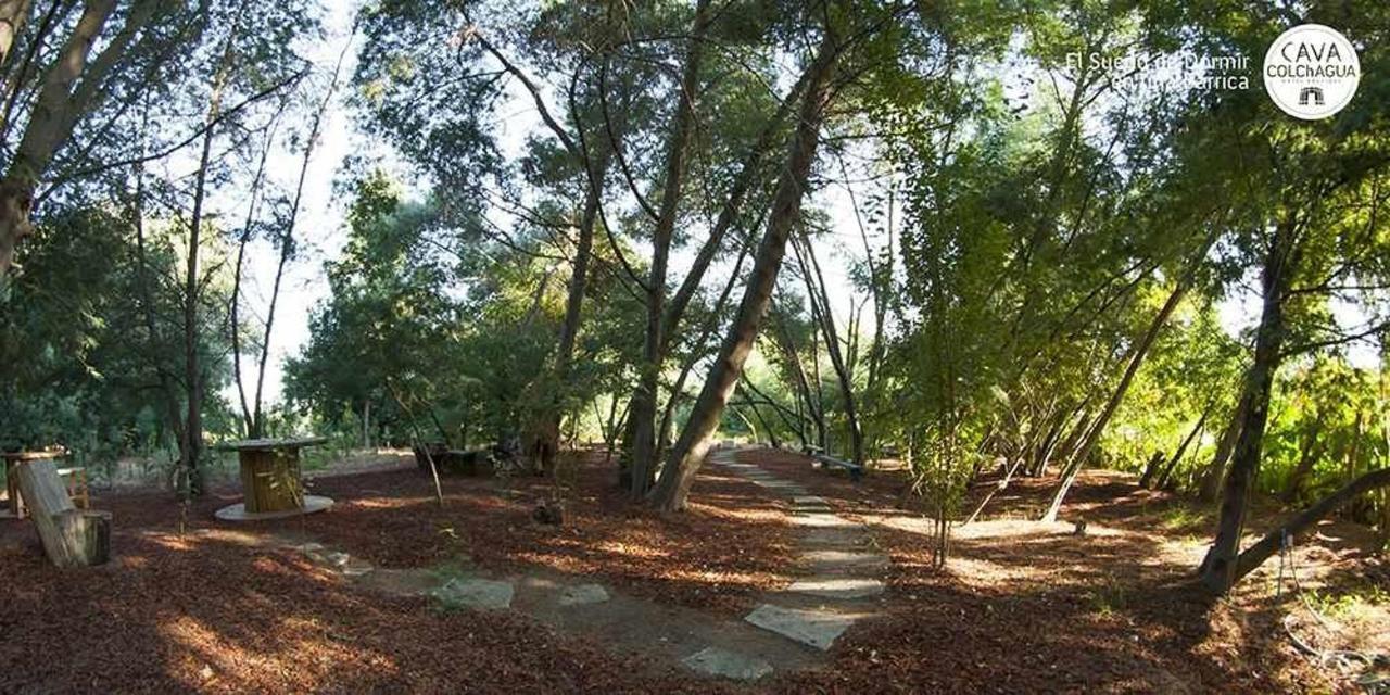 Parque y Parronales