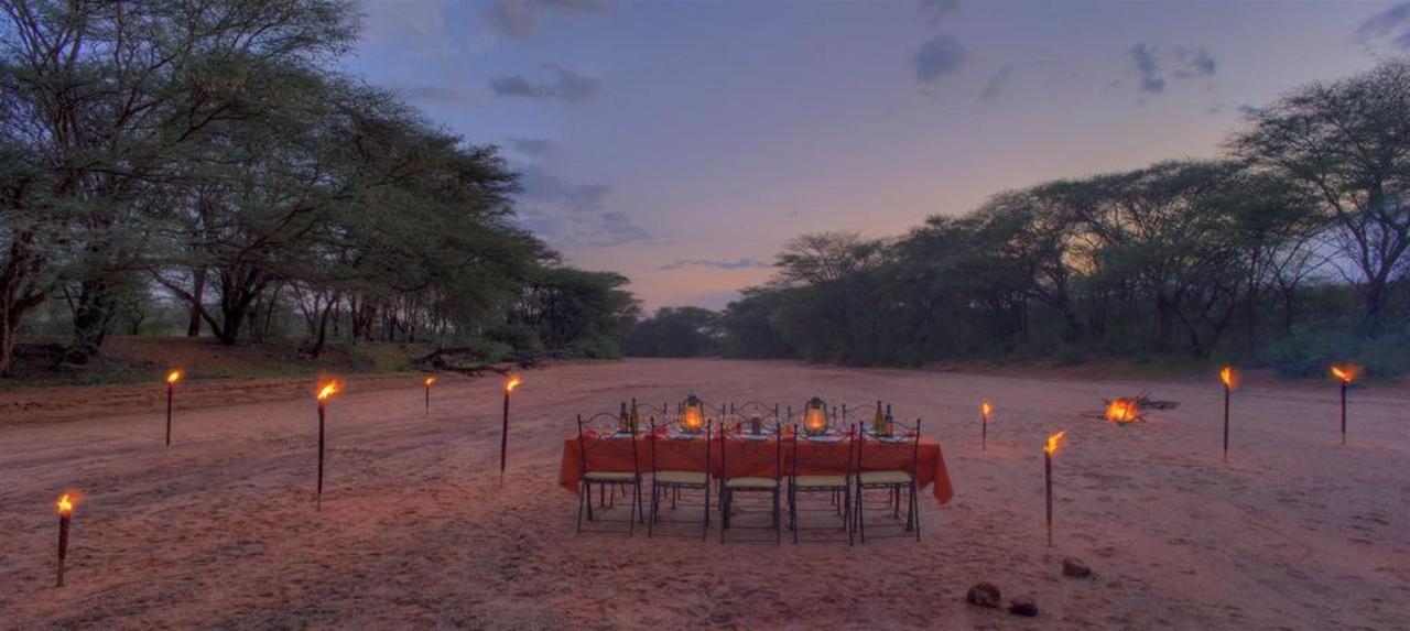 Amazingsafari experiences and luxury in the wild.jpg
