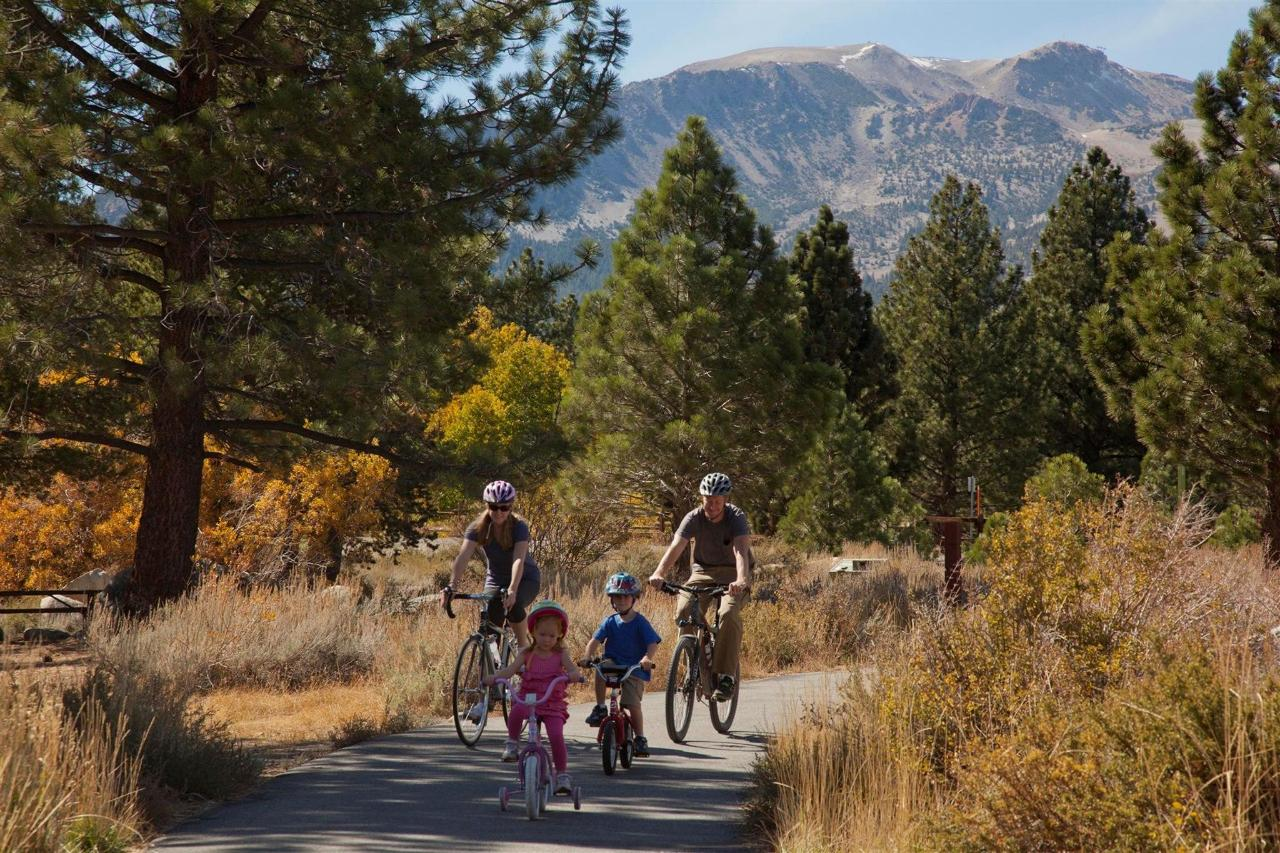 family-biking-in-the-fall-9.jpg