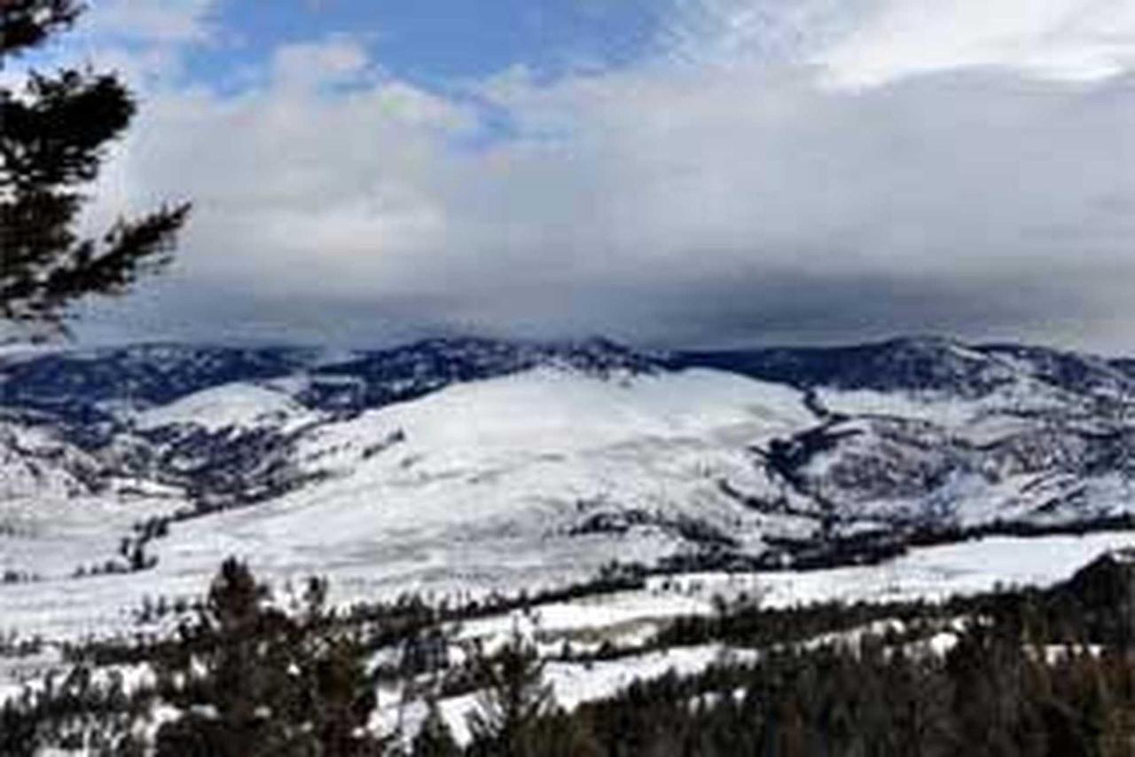 snow.jpg.1920x0.jpg
