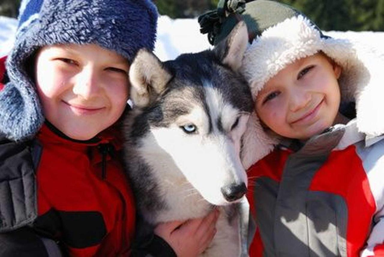 kids-20with-20husky.jpg.1920x0.jpg