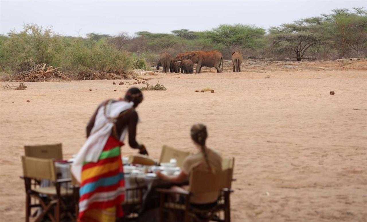 Breakfast with the Elephants.jpg