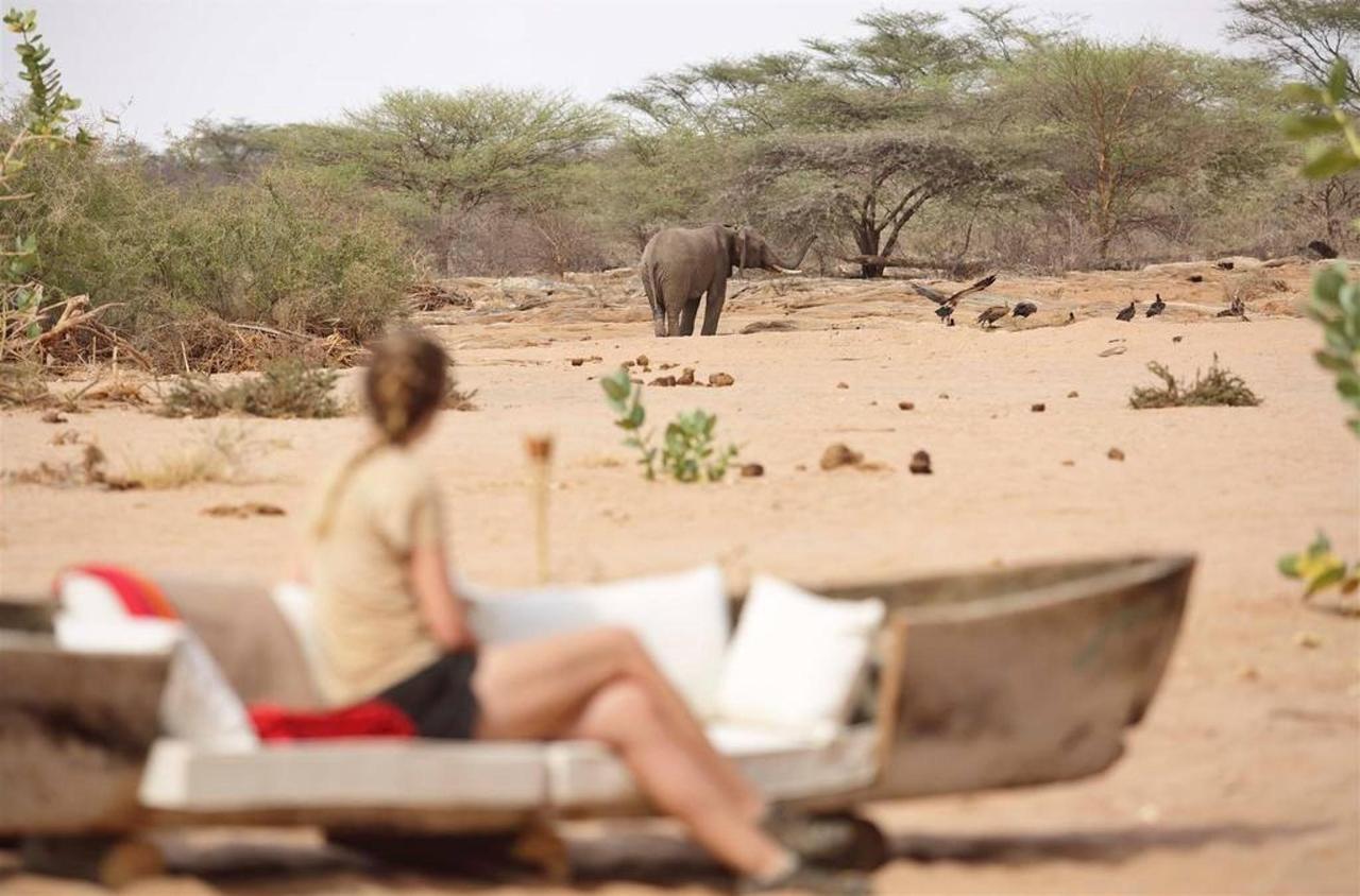 Wildlife big screen at Saruni Rhino.jpg