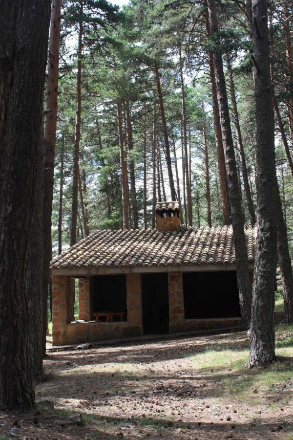 La Dehesa (picnic area)