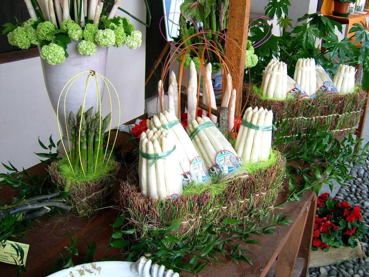 Treviso's tipical products:    asparagus