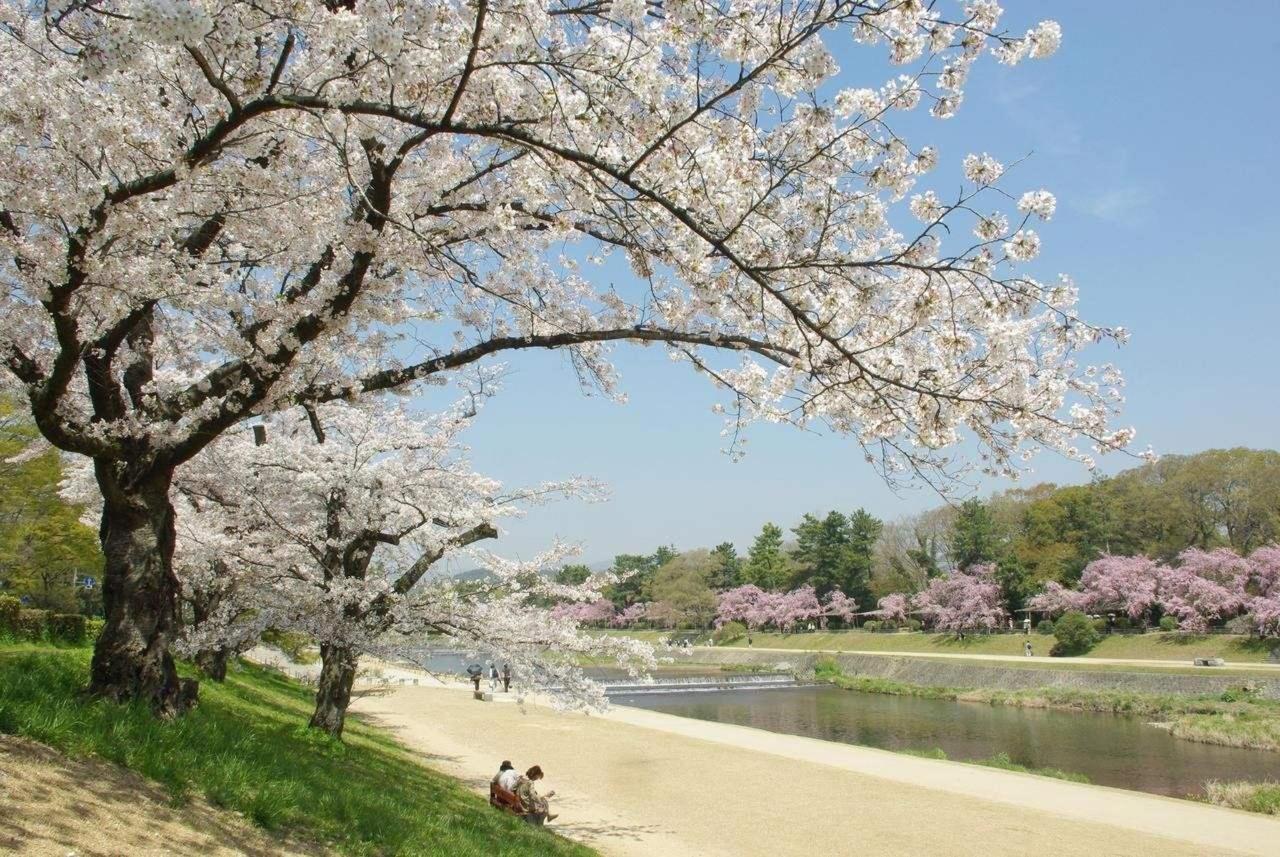 Kamo-gawa River.jpg