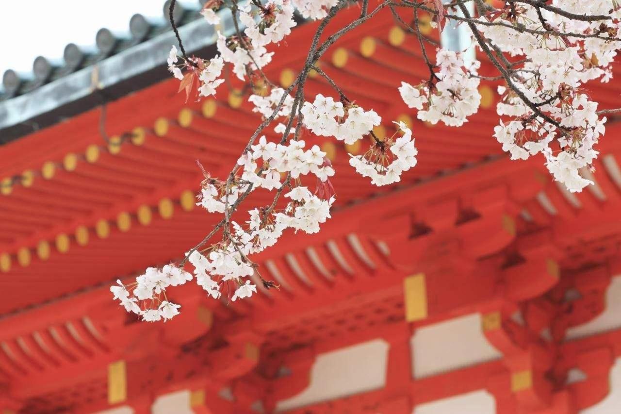 Heian-jingu Shrine.jpg
