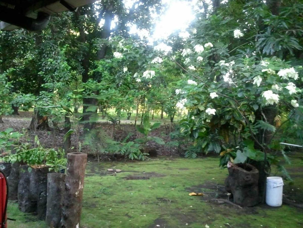 Property  Nuestro Jardín.