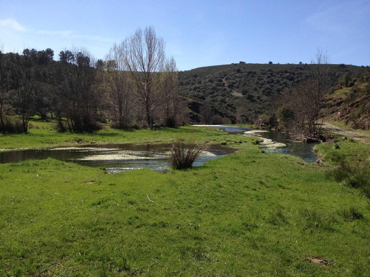 Ribera en Nuez