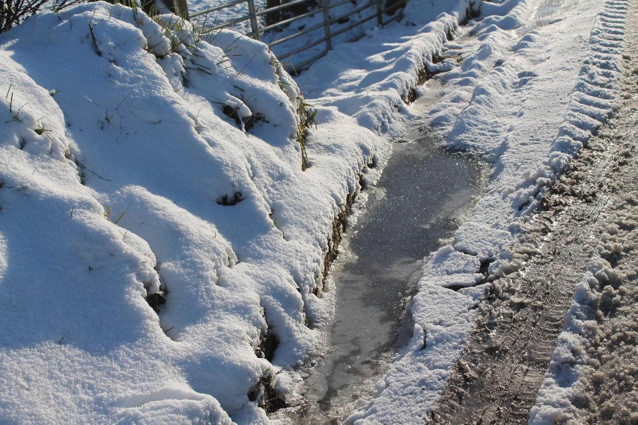December 2017 Snow Scenes
