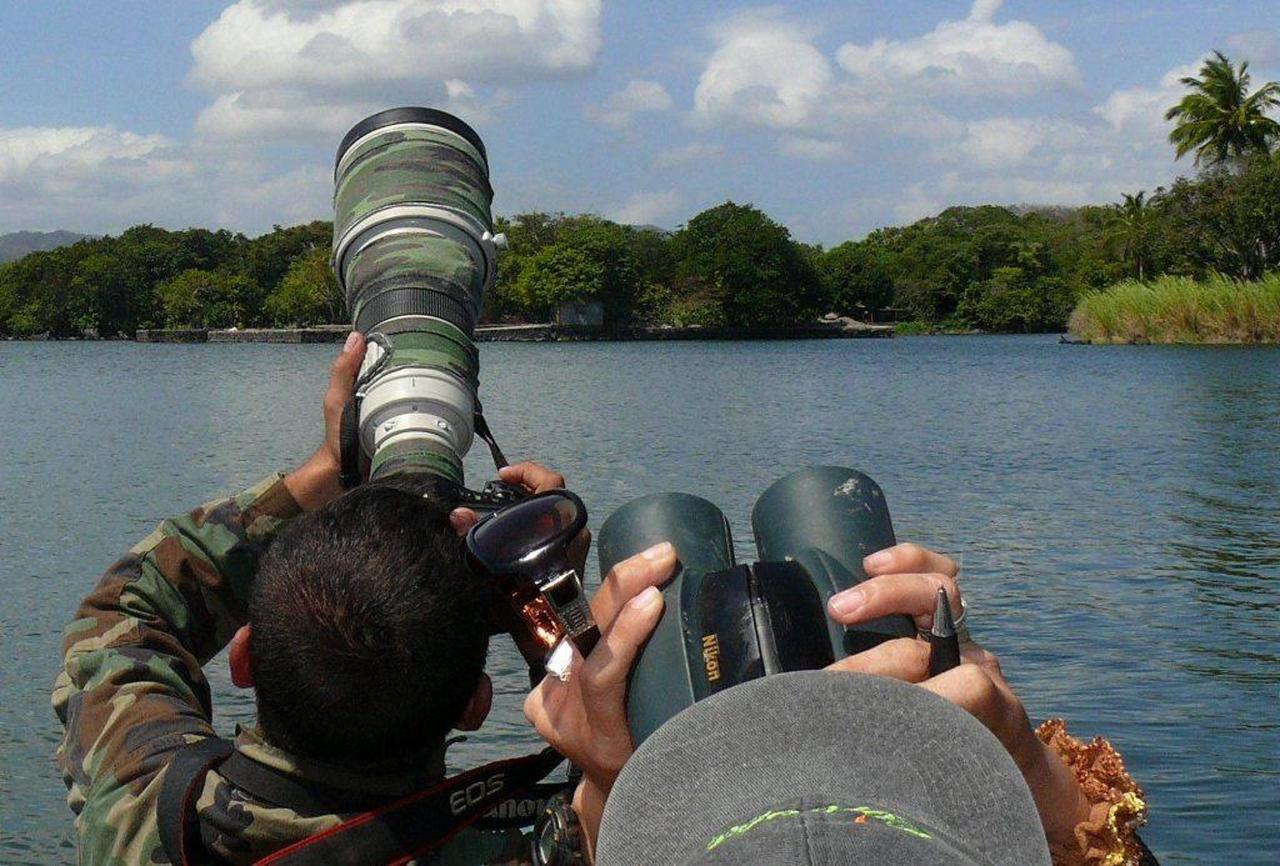 The best birdwatching in the Bay is with us at Casa Zopango & Zopango Island!