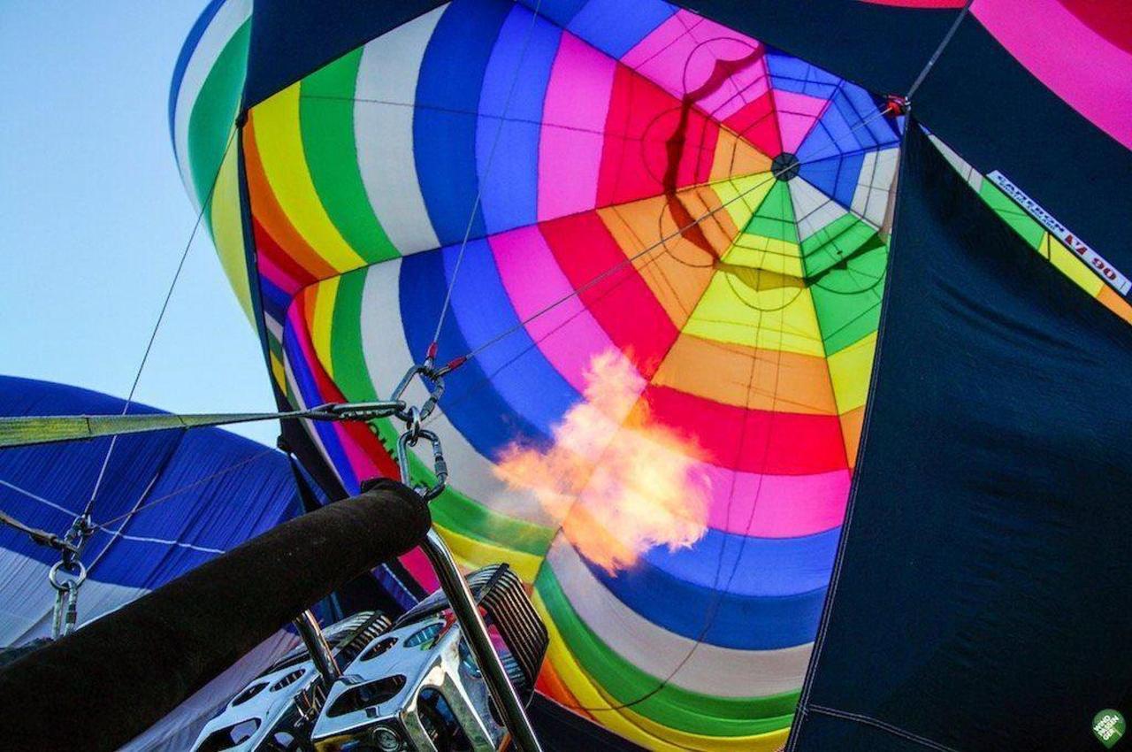 wind passenger pt - coruche.jpg