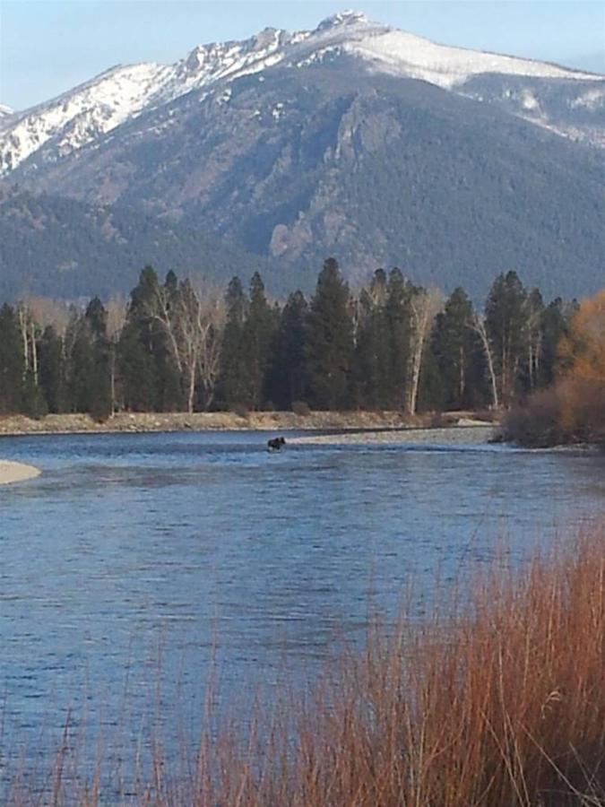 winter-view-ii.jpg.1024x0 (1).jpg