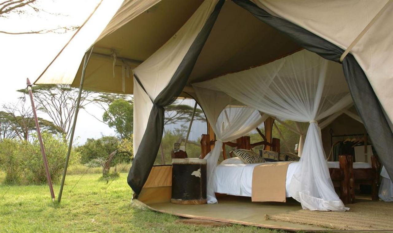 Luxury Double Tent.jpg