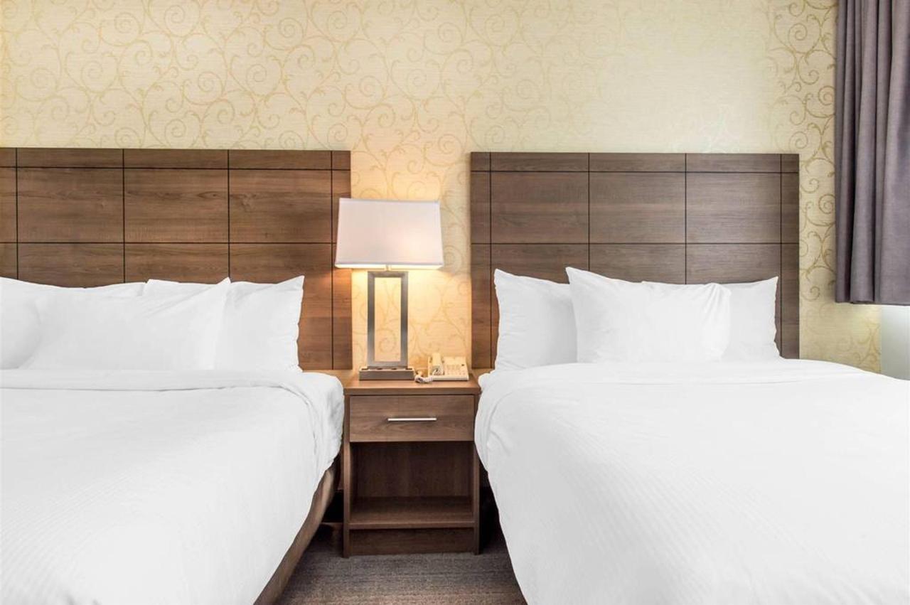 2-bed-standard-1.jpg.1024x0.jpg