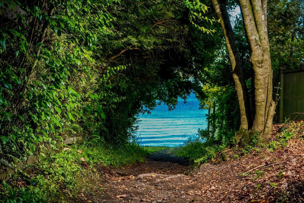 Playa Loncotraro (Lago Villarrica)