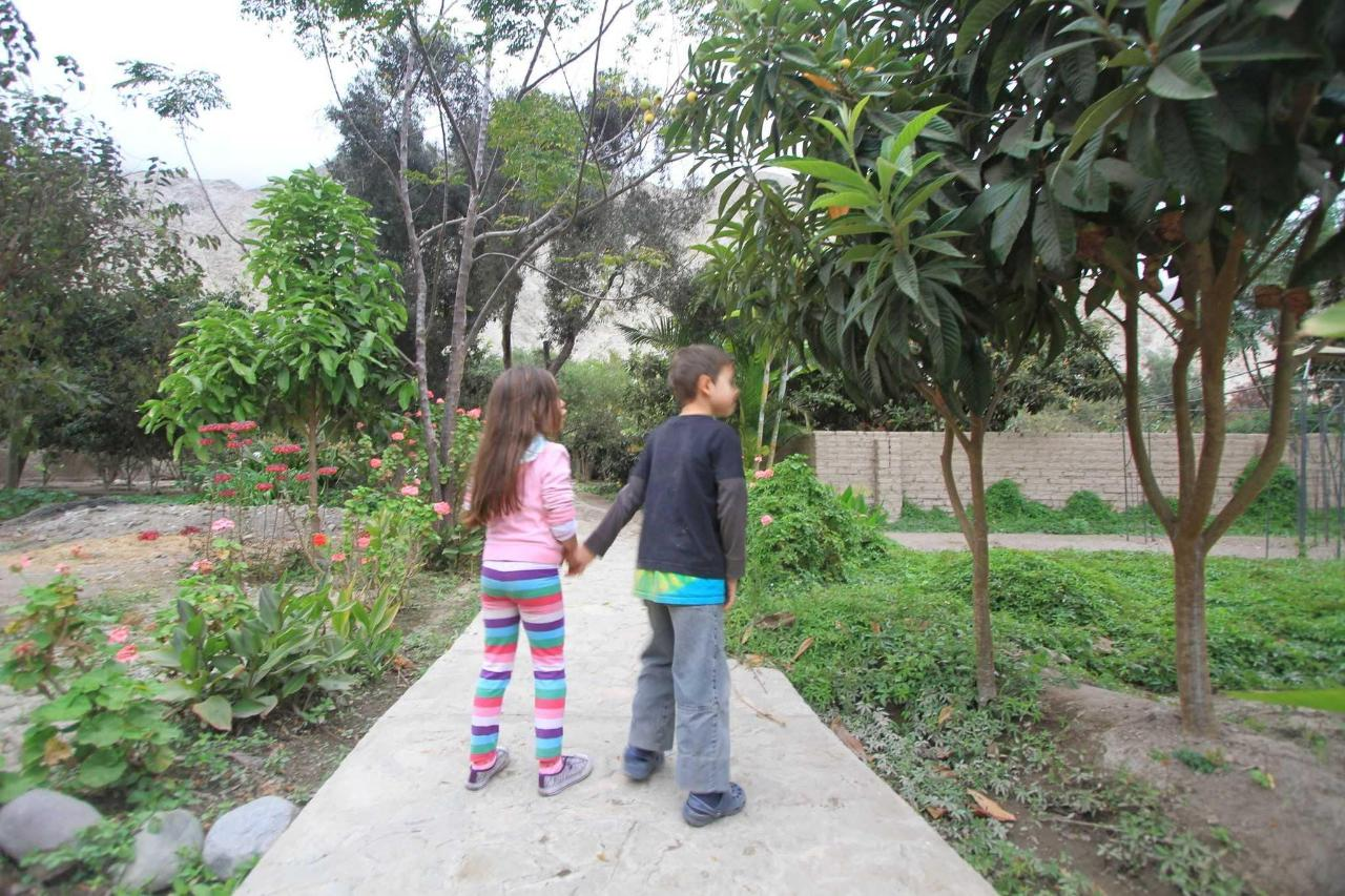 jardin bio.JPG