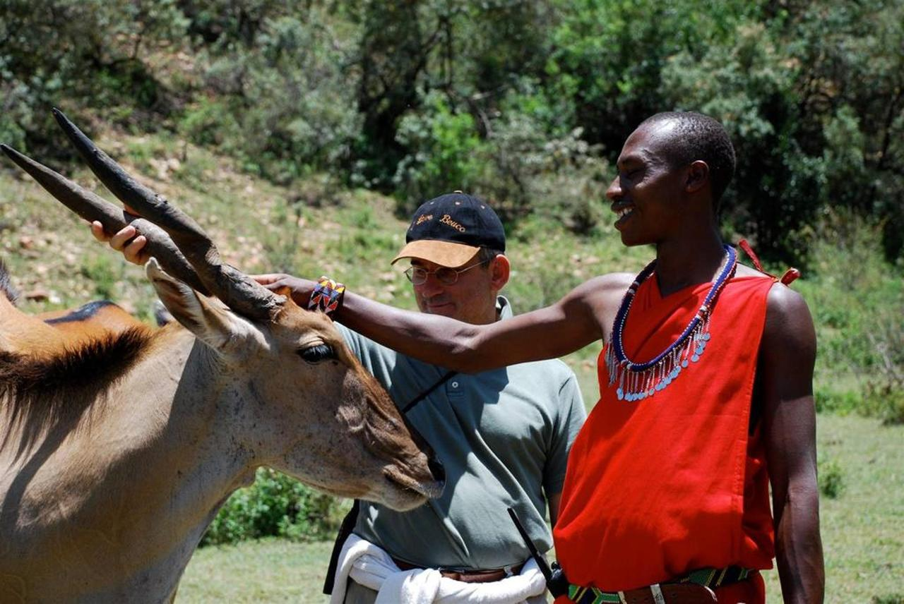 Sarikoki the eland following guide on walk.jpg