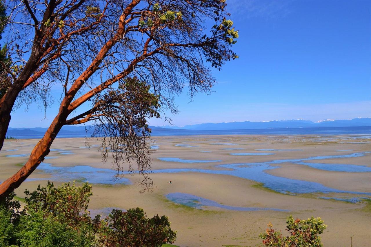 Tigh-Na-Mara Low Tide