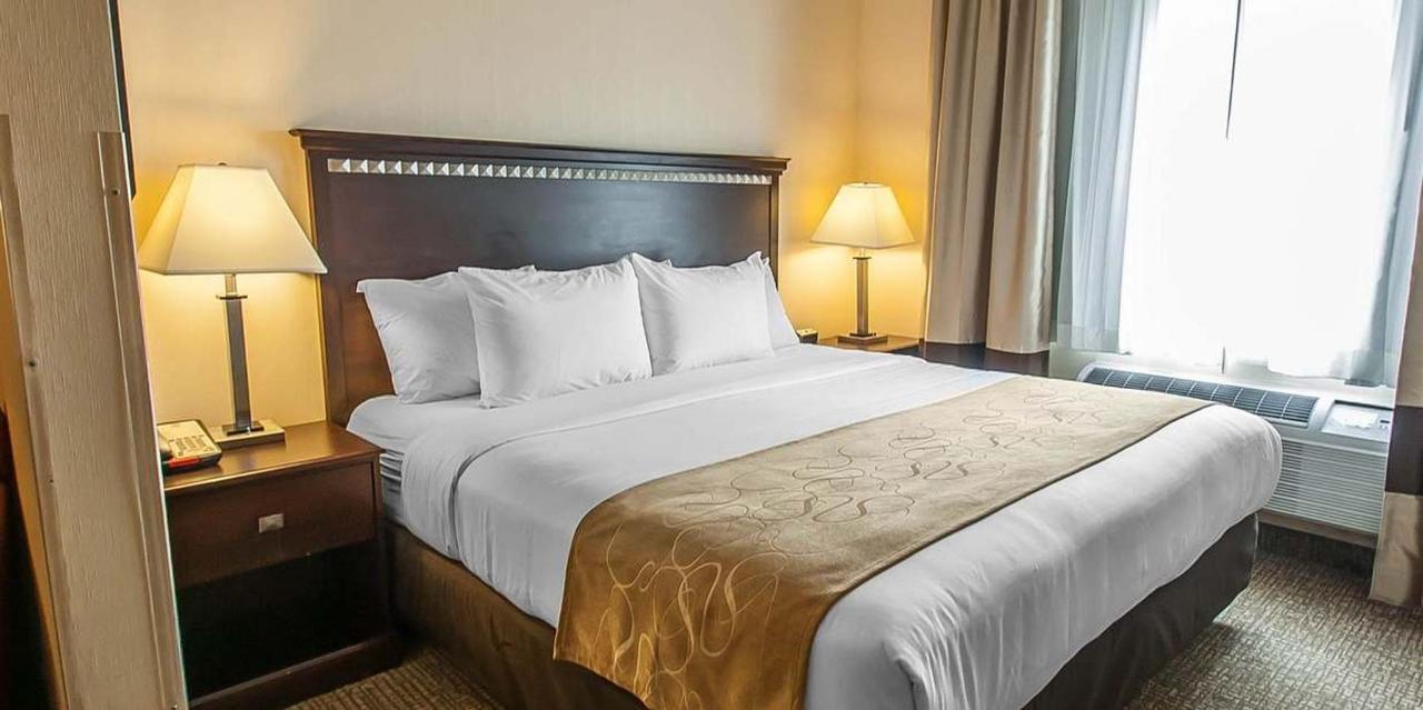 King Bed Suite 3.jpg