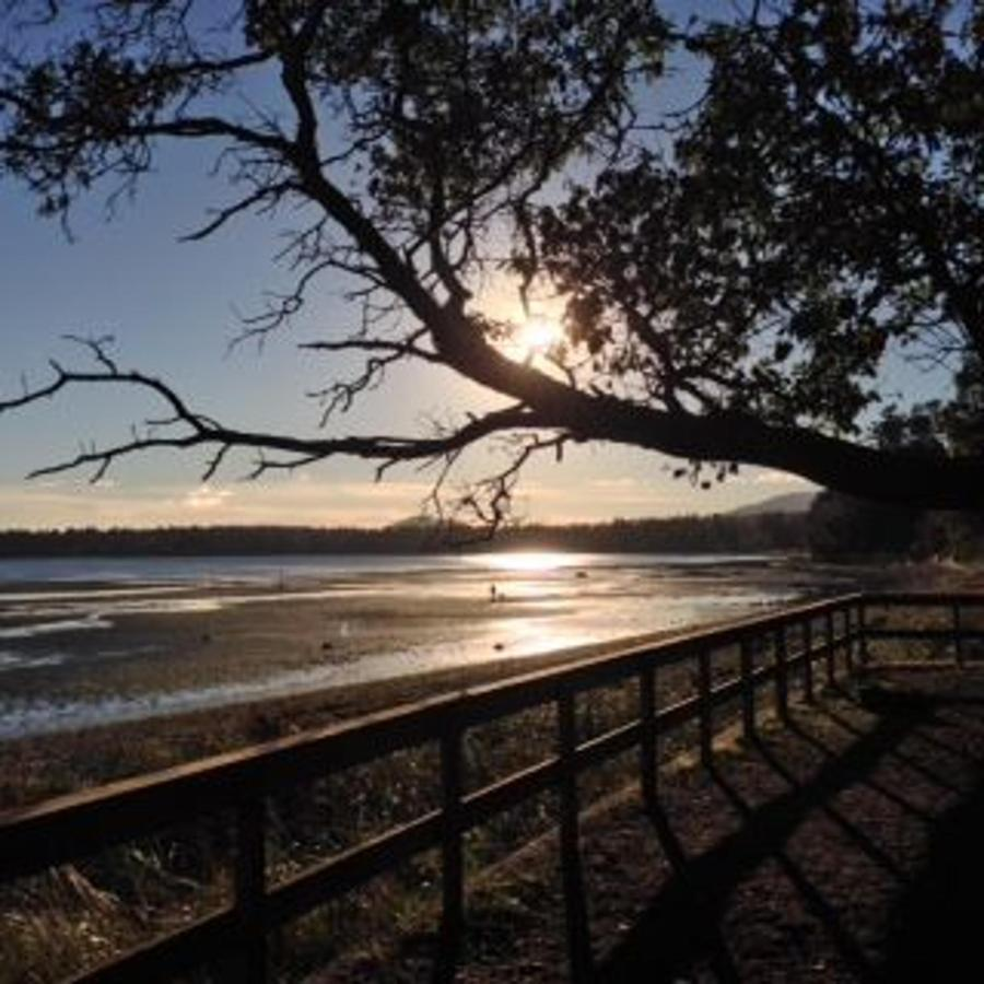 Tigh-Na-Mara Seaside Spa Resort Sunny Morning