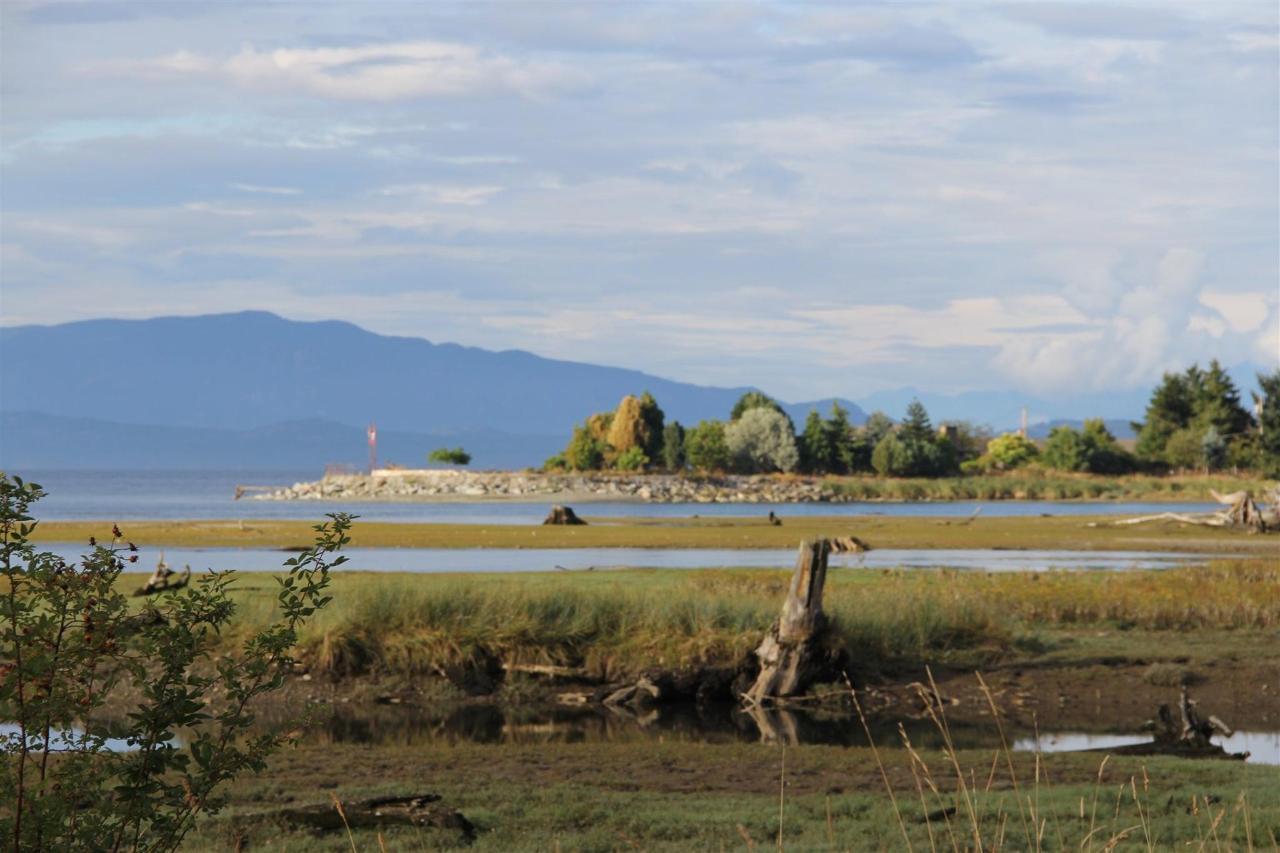 vancouver-island-analarai-18.JPG