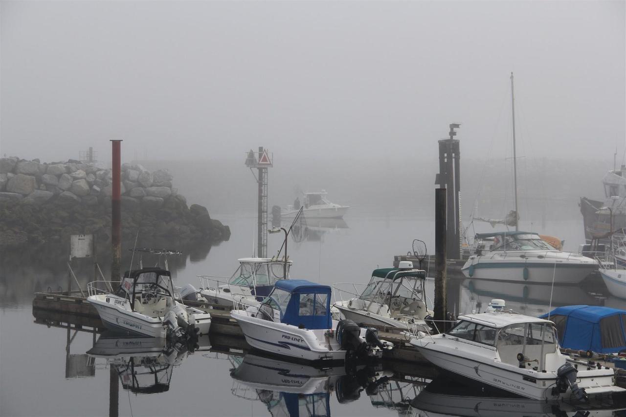 Vancouver Island Analarai Harbor Boats