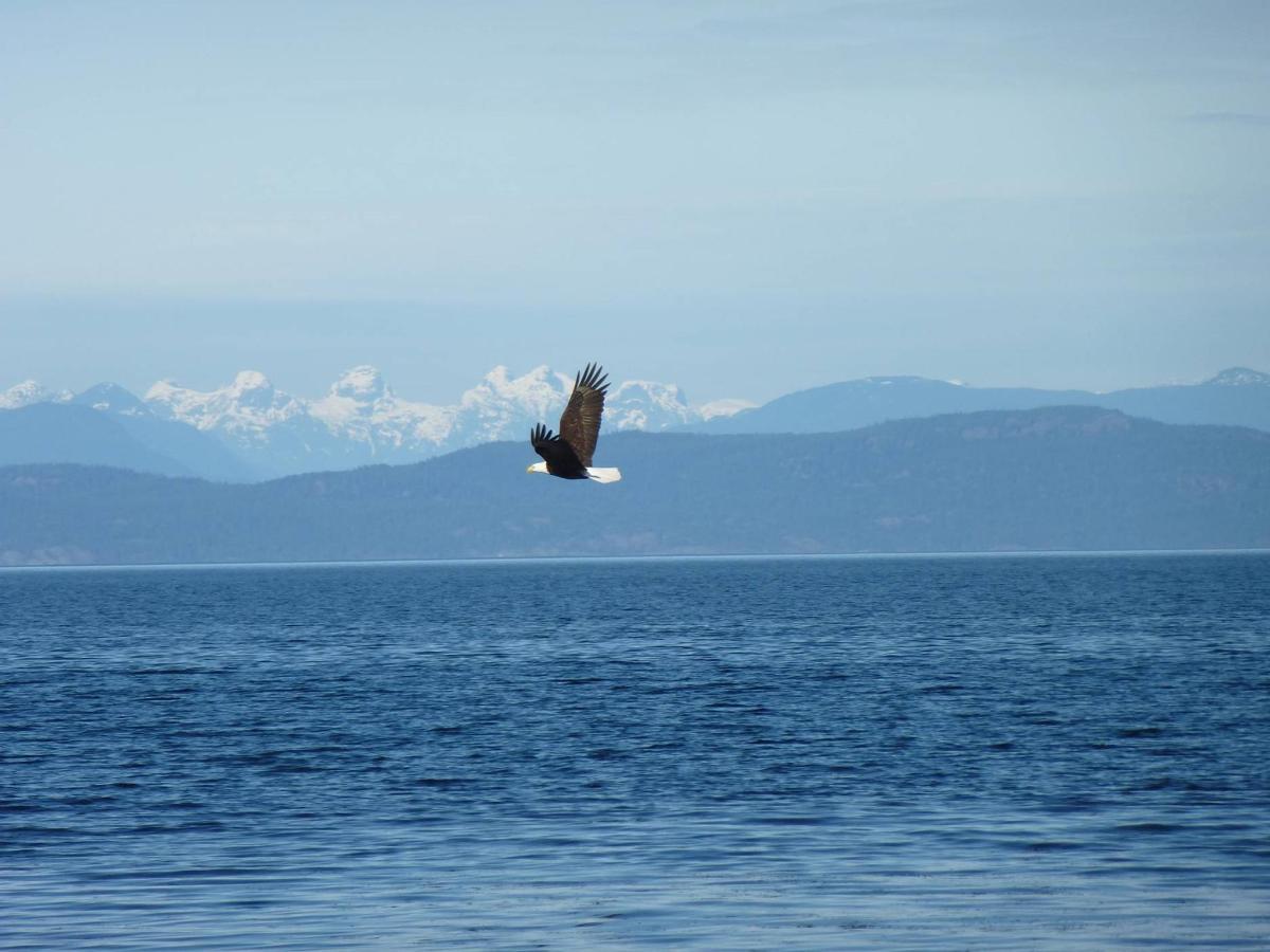 Tigh-Na-Mara Seaside Spa Resort Eagle Ocean